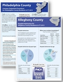 County Profiles – Hospital Admissions and Outpatient Procedures in FY2013